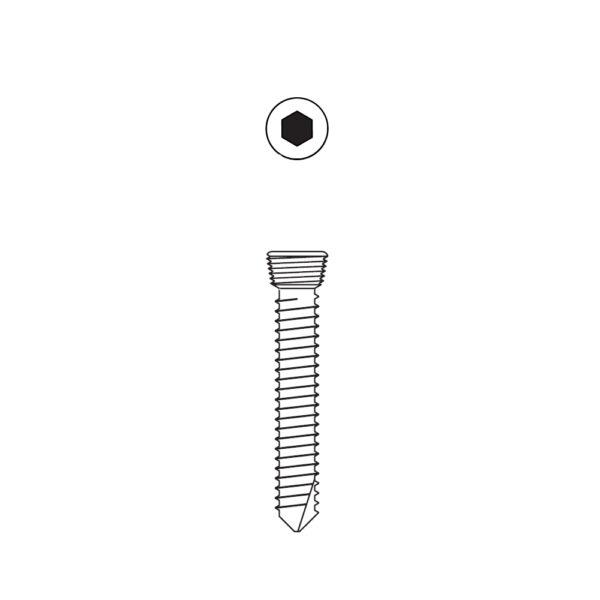 Vite Bloccata Esagonale da 3.5 mm
