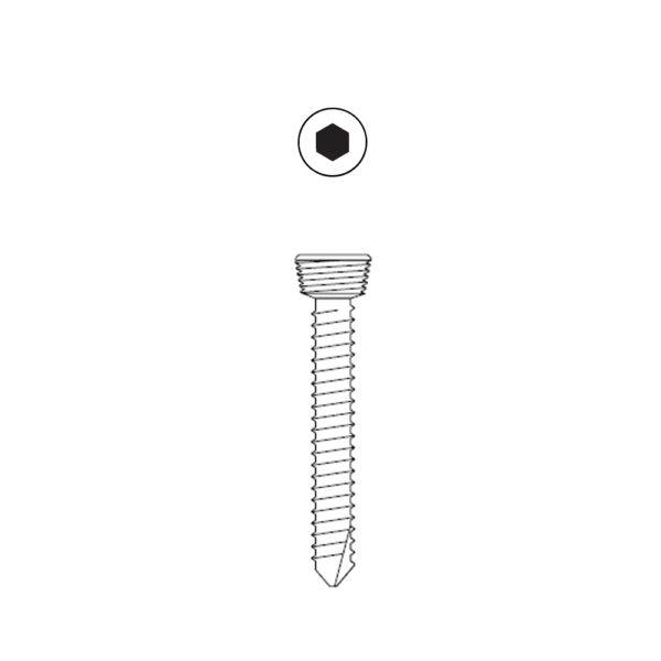 Vite Bloccata Esagonale da 2.7 mm Testa da 3.5 mm